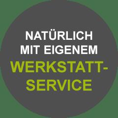 Icon Werkstattservice